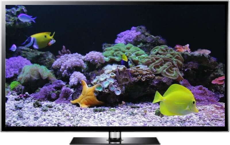 Make your tv screen into an aquarium for Fish tank screen